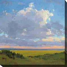@Overstock - Artist: Kim Coulter  Title: Afternoon Sky I  Product Type: Giclee canvas arthttp://www.overstock.com/Home-Garden/Kim-Coulter-Afternoon-Sky-I-Oversized-Canvas-Art/3908153/product.html?CID=214117 $113.99