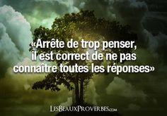 Les Beaux Proverbes – Proverbes, citations et pensées positives » » Arrête de trop penser