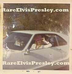 Pink hat.....Priscilla Presley