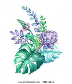 tropical flowers arrangement exotic nature floral bouquet protea monstera green leaves watercolor illustration isolated on white background - stock photo Tropical Flower Arrangements, Tropical Flowers, Small Flowers, Purple Flowers, Spring Flowers, Botanical Flowers, Botanical Art, Watercolor Illustration, Watercolor Paintings