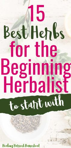Are you ready to start learning to become an herbalist? Are you wondering where to start? Here are 15 herbs that are perfect for the beginning herbalist. They have multiple uses, and they're safe for most people. Find out how to use herbs for your health! #herbalism #howtobecome #forbeginners #howtobe #apothecary #medicine #remedies #healing #healingharvesthomestead Herbal Remedies, Health Remedies, Natural Remedies, Healing Herbs, Medicinal Plants, Herbal Tinctures, Herbalism, Natural Medicine, Herbal Medicine