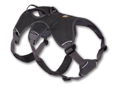 Ruffwear Web Master™ - Supportive, Multi-Use Dog Harness (***XS for Skylar and M for Gucci***)