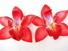Hawaiian Red Cymbidium Orchid