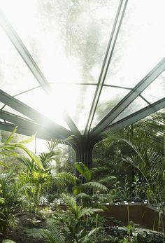Greenhouse Botanical Garden Grueningen / idA
