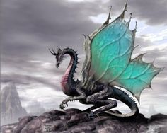 Dragon with teal wings