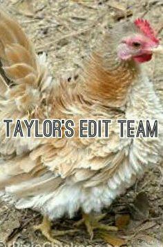 TAYLOR'S EDIT TEAM