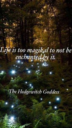 Life is too magikal not to be enchanted by it... The Hedgewitch Goddess