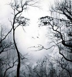 Funny pictures about Mother Nature. Oh, and cool pics about Mother Nature. Also, Mother Nature photos. Image Illusion, Illusion Art, Illusion Paintings, Illusion Kunst, Art Visage, Tree Faces, Wow Art, In The Tree, Tree Art