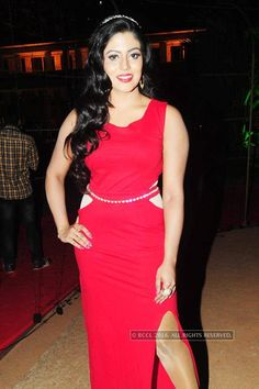 Flowers TV Awards 2016- The Times of India Photogallery