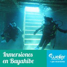 #buceo #inmersiones #bayahibe #excursionespuntacana #puntacana #turismopuntacana #weilercaribbeansea #bavaro #caribe