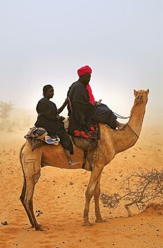 Two Seater Camel . Burkina Faso