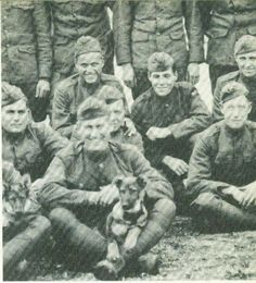 pictures of rin ti tin in world war 1 | post apocalyptic bohemian: Born On This Day- September 10th... Rin Tin ...