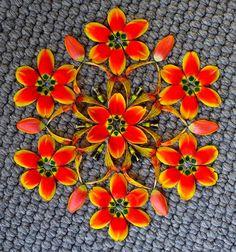 Flower Mandalas by Kathy Klein_10