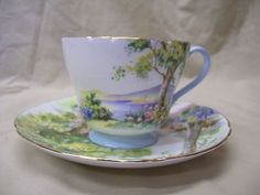 Old-Shelley-Fine-Bone-China-Cup-and-Saucer-with-Woodland-Design-13348