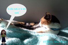 My cat, Plz comment! - Album - Galleries - Friends LEGO.com