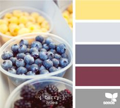 berry hues for wedding colors - includes yellow, grey & blues / purples - but blues may not be vibrant enough