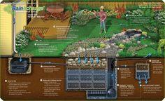 Rainwater Harvesting System - sustentabilidade - Horta - casa - home Permaculture Design, Irrigation, Rainwater Cistern, Water From Air, Water Water, Rainwater Harvesting System, Water Storage, Earthship, Water Conservation