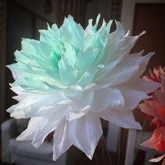 crepepaperflowers crepe paper クレープペーパーフラワー