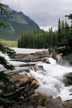 https://flic.kr/p/oSJcN | Alberta_Jasper_Athabasca River_Athabasca Falls_picture of the trip_