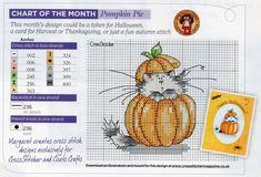 Pumpkin Pie kitty.