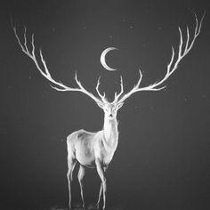 #moon #deer