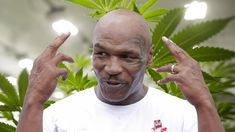 Mike Tyson Is Building a California Weed Resort The Legend Of Zelda, Mike Tyson, What Is Trending Now, What's Trending, Like Mike, Medical Cannabis, Love Can, Celebrity Gossip, California