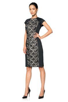 Lace Panel Sheath Dress | Tadashi Shoji
