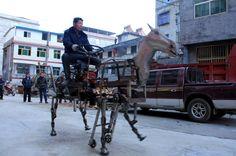 Su Daocheng schwört auf sein mechanisches Pferd, das er lenkt wie einen Traktor (hier im Januar in Shiyan, Hubei-Provinz).