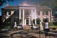 #Graceland - Sök på Google