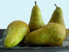 Pear | TC Fruits