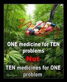 It's ok for the pharmaceutical companies to make money off of marinol tho....greedy sob's!