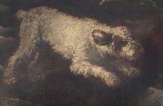 Pittore lombardo 1600, olio su tela, Lagotto Romagnolo