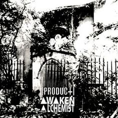 [product] - Awaken The Alchemist (File) at Discogs