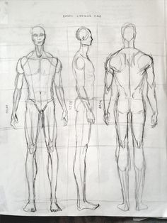 male croquis - Google Search