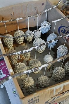 Painted pine cone ornaments could also be really cute centerpieces or winter wedding decorations winterweddings christmasweddings by melindause cinnamon pine cones! Great way to let your painted pine cone ornaments drypainted pine cone ornaments- Wan Pine Cone Art, Pine Cone Crafts, Christmas Projects, Fall Crafts, Holiday Crafts, Diy And Crafts, Paper Crafts, Painting Pine Cones, Pine Cone Wreath