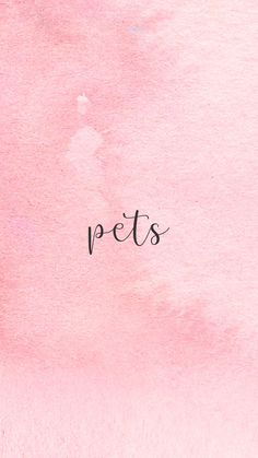 INSTAGRAM STORY COVER : PETS WWW.INSTAGRAM.COM/JORDANRENIE Instagram Roses, Story Instagram, Instagram Logo, Free Instagram, Snoopy Wallpaper, Wallpaper Quotes, Rose Icon, Instagram Background, Insta Icon
