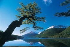 Lago deseado  Tierra del fuego Chile
