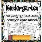 Kindergarten Common Core Aligned 30 ELA Skill Checks! $