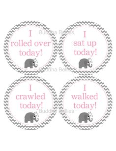 SO CUTE!!!Grey and Pink Elephant Milestone Stickers...New Baby Gift for Expecting Moms...Baby's Firsts. $3.50, via Etsy.