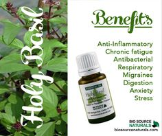 Amyris essential oil helps relieve anxiety, depression, and tension. Shop affordable and therapeutic essential oils and blends with BioSource Naturals! Basil Essential Oil, Essential Oil Blends, Essential Oils For Depression, Insomnia Cures, Therapeutic Essential Oils, Natural Healing, Holistic Healing, Natural Oils, Natural Medicine
