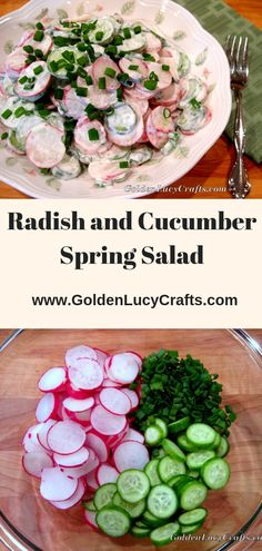 Radish and Cucumber Spring Salad spring recipe radish salad Ukrainian recipe gluten free recipe healthy food spring salad Cucumber Recipes, Healthy Salad Recipes, Healthy Food, Healthy Spring Recipes, Gluten Free Recipes, Gourmet Recipes, Radish Salad, Cucumber Salad, Gluten Free Puff Pastry