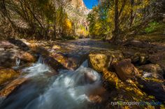 Scattered fall leaves line the edges of Aravaipa Creek in the Aravaipa Canyon Wilderness near Mammoth, Arizona. Fall Leaves, New Work, Wilderness, Landscape Photography, Arizona, Waterfall, Outdoor, Image, Autumn Leaves