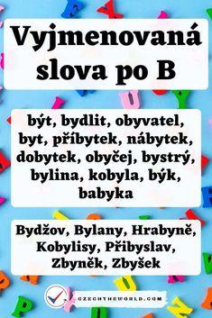 Vyjmenovaná slova po B - přehled s obrázky a procvičování Literatura