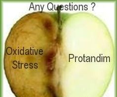 #Protandim®  patented #Nrf2 Activator, which is a unique antioxidant booster shown to reduce #oxidative stress in clinical studies by an average of 40%. 95% of all disease is related to oxidative stress.  http://www.lifevantage.com/lmusgrave