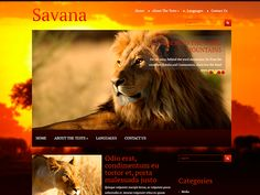 Social Bar, Seo Optimization, Themes Free, Responsive Web Design, Wild Nature, Wordpress Theme