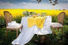 Záhradné posedenie s kolekciou tkanín Loneta.  #piknik#posedenie#zahrada#obrus#prestieranie Himmelblau, Table Decorations, Inspiration, Furniture, Block Party, Home Decor, Garden Ideas, Party Ideas, Flower Jewelry