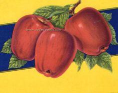 1940s Red Juicy Apple Apples Kitchen Art Vintage Crate Label