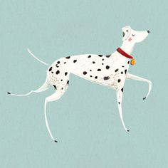 Dalmation - Emma Block