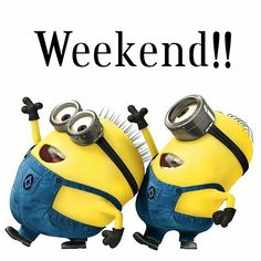 """Just scroll down and keep reading these """"Top Minions Birthday Quotes Images"""". It will make you laugh and funny for whole day. Crazy Friends, Happy Friends, Happy Mom, Funny Happy, Weekend Humor, Weekend Quotes, Friday Humor, Funny Weekend, Le Weekend"""