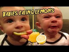 Top 10 Babies Eating Lemons for the First Time